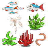 Water animals fish food vector illustration. Water animals fish food cartoon colorful vector illustration Stock Photos