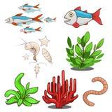 Water animals fish food vector illustration Stock Photos