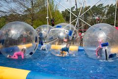 Water or Aquazorbing. Children play inside the inflatable transparent ball floating in swimming pool. Water walking or zorbing stock images