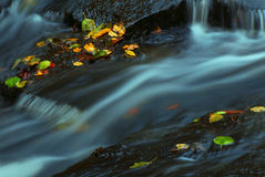 Water in autumn stream. Autumn leaves and rushing water at a rocky stream Stock Image