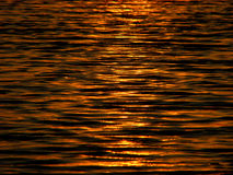 Water Background. The golden water of sunset makes a beautiful background Royalty Free Stock Photo