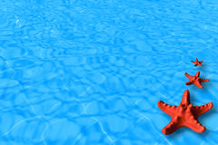Water background with red starfish Stock Photos