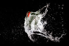 Water balloon explosion Royalty Free Stock Images