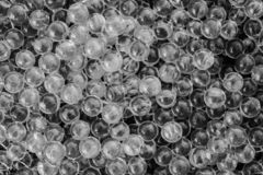 Water black and white gel balls with bokeh. Polymer gel. Silica gel. Balls of black and white hydrogel. Crystal liquid ball with stock images