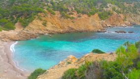 Blue Water Green Beach Wood Mallorca Royalty Free Stock Images