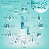 Water in Body. Water is the driving force of all nature. The illustration of bio infographics with human body organs icons in transparent style. Ecology and Stock Image