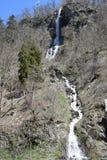 Water, Body Of Water, Waterfall, Tree stock photo