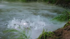 Water boils in a river, lake or swamp. stock video
