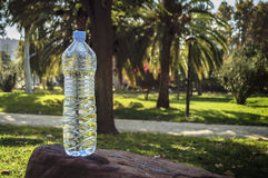Water bottle on grass Royalty Free Stock Photography
