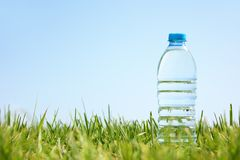 Water bottle on green grass Royalty Free Stock Photo