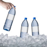 Water Bottle on Ice Cube Royalty Free Stock Photo