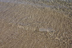 Water bottle in the sea on golden sands Stock Photo