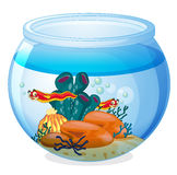 A water bowl and animals Stock Image