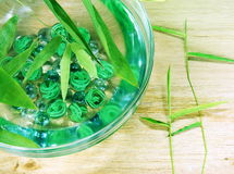 Water in Bowl with Bamboo Sprouts Royalty Free Stock Image