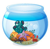 A water bowl and a fish. Illustration of a water bowl and a fish on a white background Stock Image