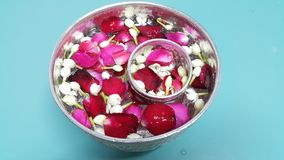 Water in bowl mixed with perfume and flowers corolla for Songkran festival in Thailand Stock Image