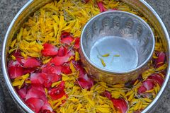 Water in bowl mixed with perfume and flowers. Songkran festival in Thailand stock photos