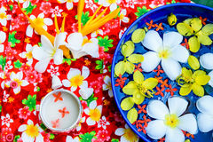 Water in bowl Songkran festival in Thailand. Water in bowl with many flower, Songkran festival in Thailand royalty free stock image