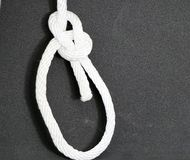 Water Bowline Knot. The Water Bowline is described by Ashley as a Bowline with an extra half hitch It makes a secure loop in the end of a piece of rope stock image