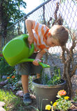 Water Boy. Cute preschool boy watering a potted plant Royalty Free Stock Photos