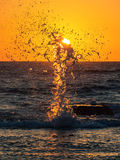 The water breaking on the sun Royalty Free Stock Photos