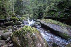Water brook Stock Photos