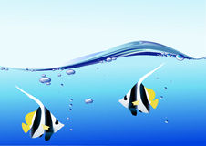 Water bubble and fish Stock Photos