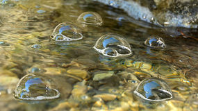 Water bubbles floating on the river. Water bubbles floating on the surface of the river close-up Stock Image