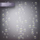 Water bubbles on a transparent checkered background. Underwater effervescent sparkling oxygen bubbles in water vector illustration