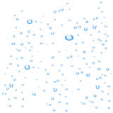 Water bubbles on white background Stock Image