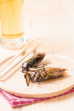 Water bug fried on wood dish Royalty Free Stock Images