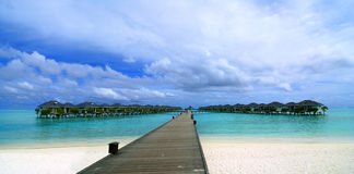 Water bungalows stock photo