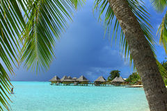 Water bungalows framed by palm trees Stock Photography