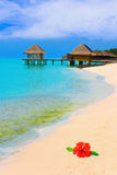 Water bungalows on a tropical island Royalty Free Stock Images