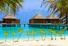 Water bungalows on a tropical island Stock Images