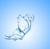 Water butterfly Stock Photography