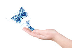 Water and butterfly Royalty Free Stock Photography