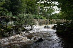Dam cascade Stock Image