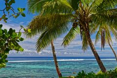 The water is calling in Tonga royalty free stock image