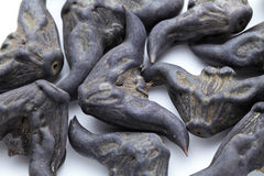 Water Caltrop Stock Photography