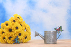 Free Water Can And Flowers Royalty Free Stock Images - 3779009