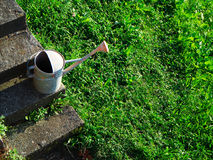 Water can on green grass meadow. A shot of a water can in a meadow stock photo
