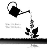 Water can  watering plant with dollar Royalty Free Stock Image