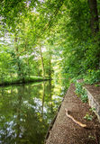 Water canal with a bough in the foreground - Spreewald, Germany. Stock Images