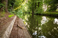 Water canal with a bough in the foreground - Spreewald, Germany. Stock Photo
