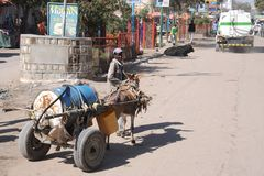 Water carrier on the street Hargeisa. Royalty Free Stock Image