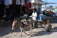 Water carrier on the street Hargeisa. Stock Photos