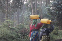 Water carries. Two women carrying bottles of water on their head  in  Rwanda Stock Image