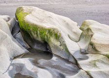 Water carved rocks. Wave action carves patterns into the rocks along a sandy beach at Olympic National Park, Washington Stock Images
