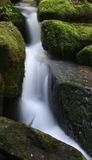 Water cascade. Cascade on small forest stream royalty free stock images